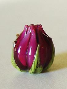 Maui Purple Flower Buds